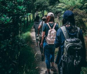 Viajar sola en grupo
